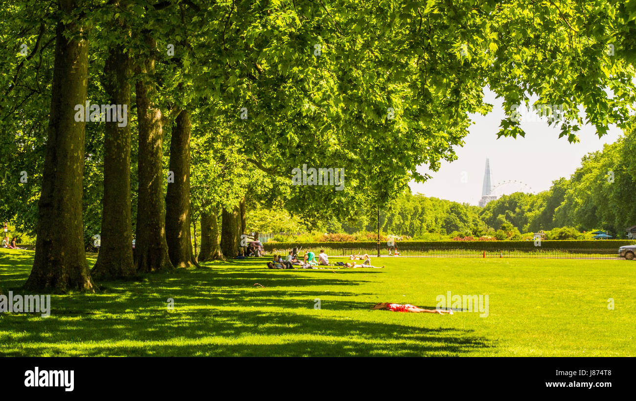 View Eastwards from Kensington Gardens London, with the London Eye & The Shard in the background. People relaxing - Stock Image