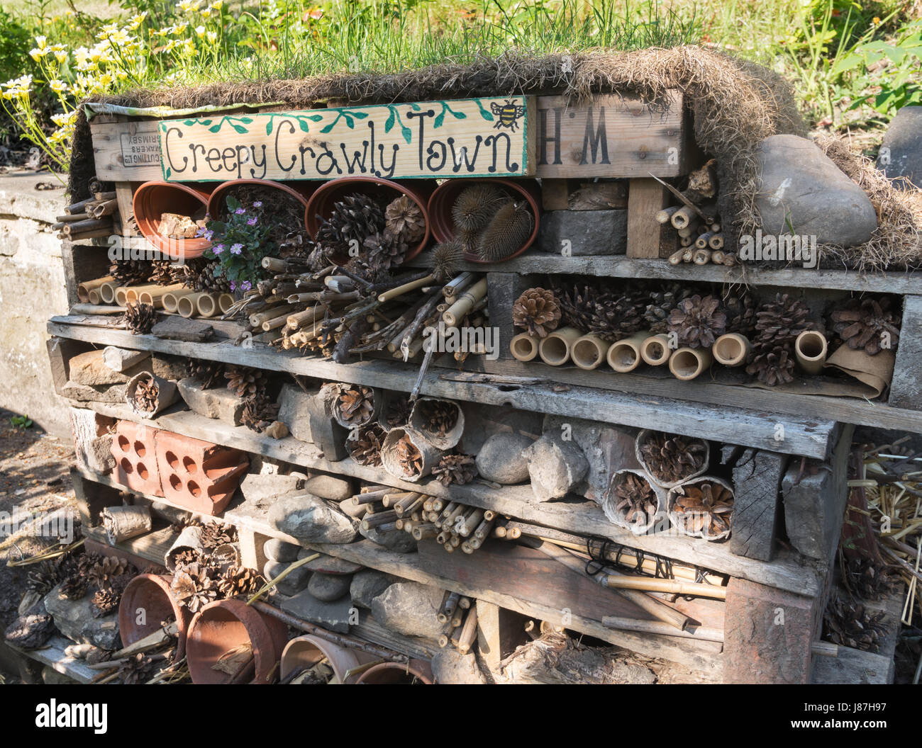 Bug Hotel, or Creepy Crawly Town, Wharton Park, Durham, England, UK Stock Photo
