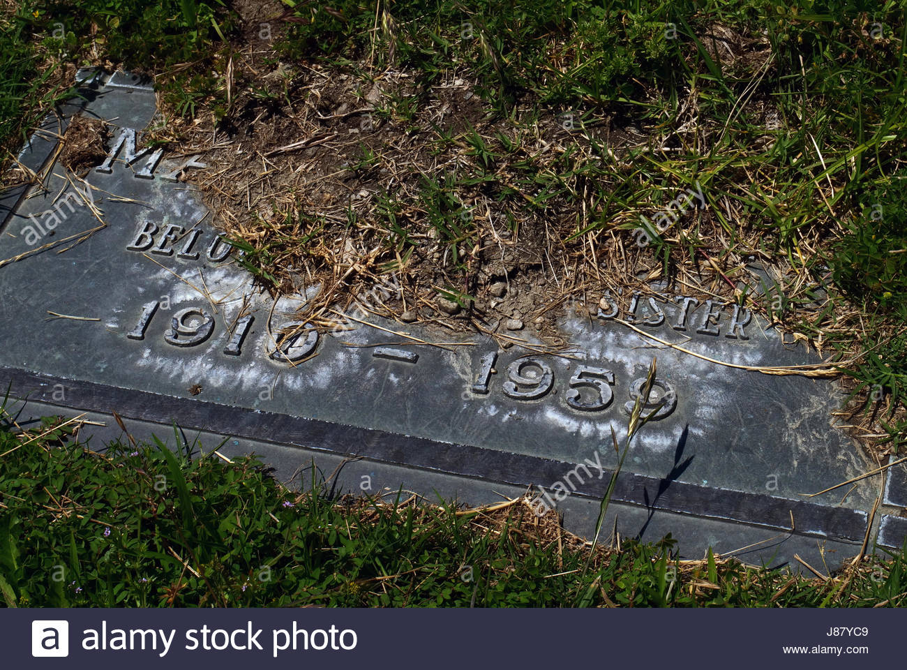 Neglected headstone of a beloved sister. - Stock Image