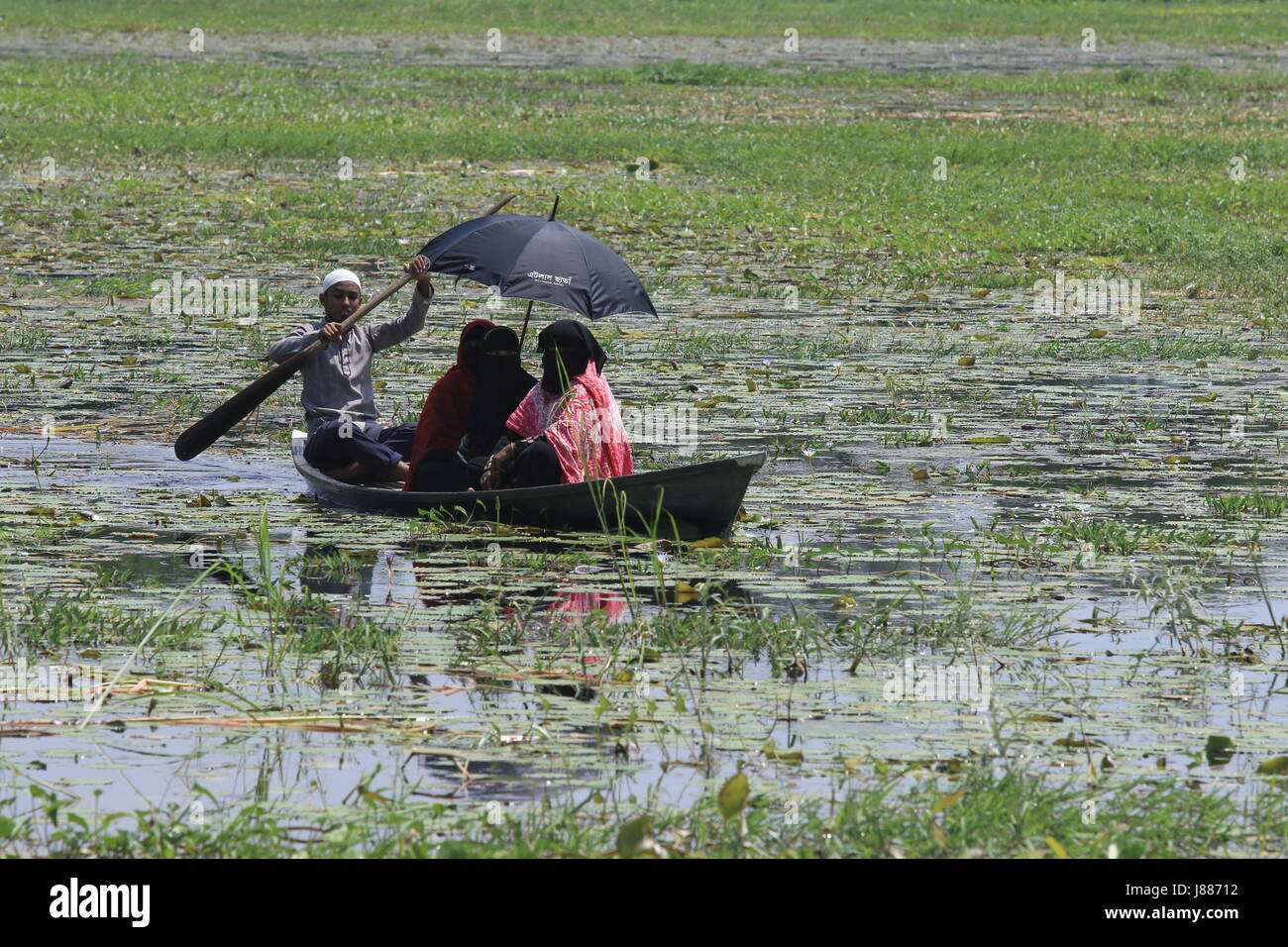 View of the Arial Beel, a large water body of 136 square kilometers, situated south of Dhaka in between Padma and - Stock Image
