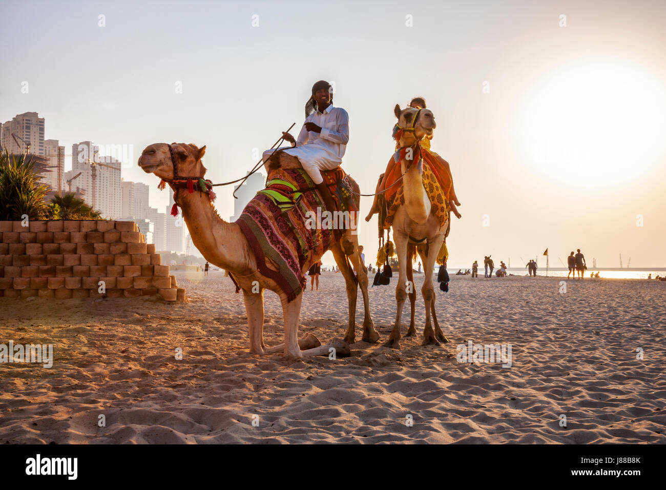 Camel with tourists on the JBR beach at sunset in Dubai - Stock Image