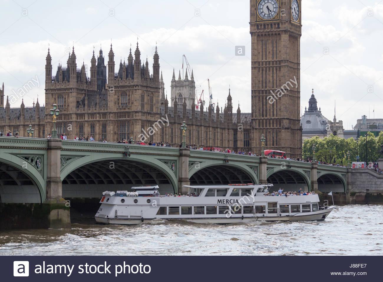 Passenger vessel Mercia sailing under Westminster bridge - Stock Image