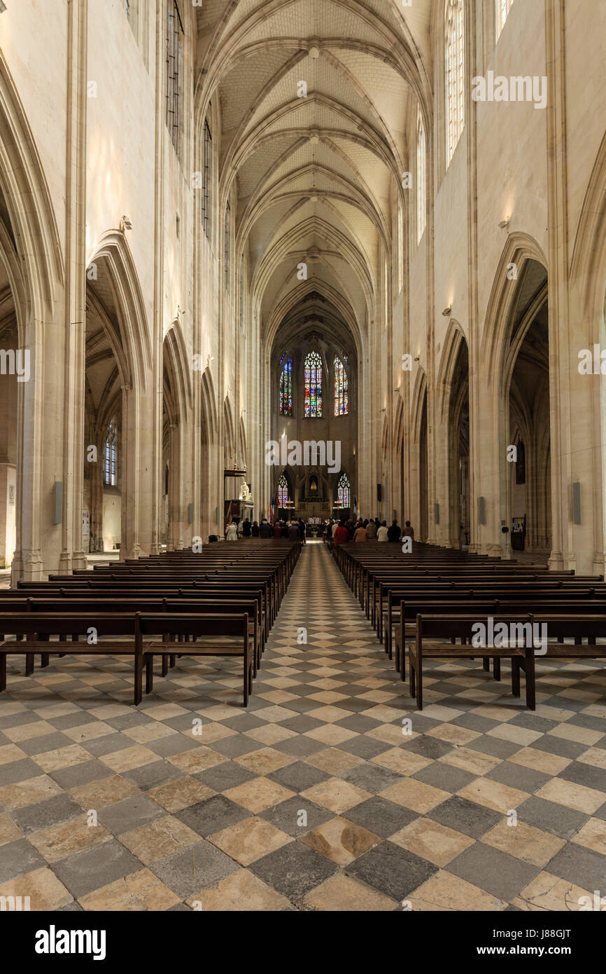 France, Loiret, Clery-Saint-Andre, the Basilica of Our Lady of Clery, the nave Stock Photo