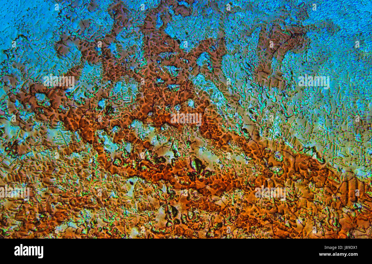 Mineral structure under microscope. Microscopical inorganic texture, background. - Stock Image