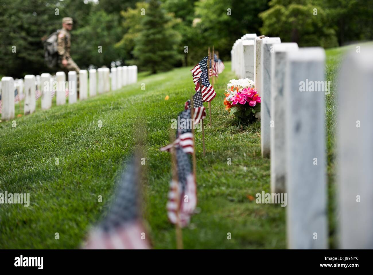 Members of 3d U.S. Infantry Regiment (The Old Guard) place American flags at gravesites in Arlington National Cemetery - Stock Image