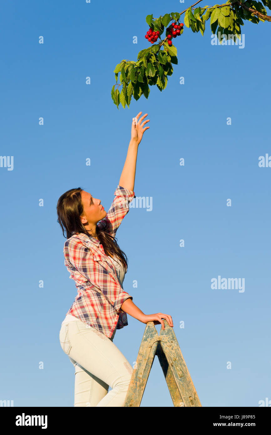 woman, summer, summerly, outdoor, season, young, younger, girl, girls, shine, - Stock Image