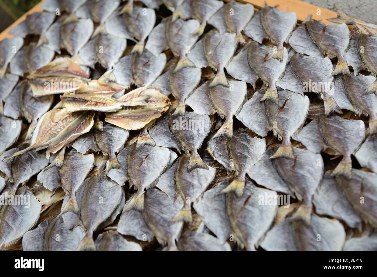 Dried fish at a market stall Cheung Chau Island, Hong Kong - Stock Image