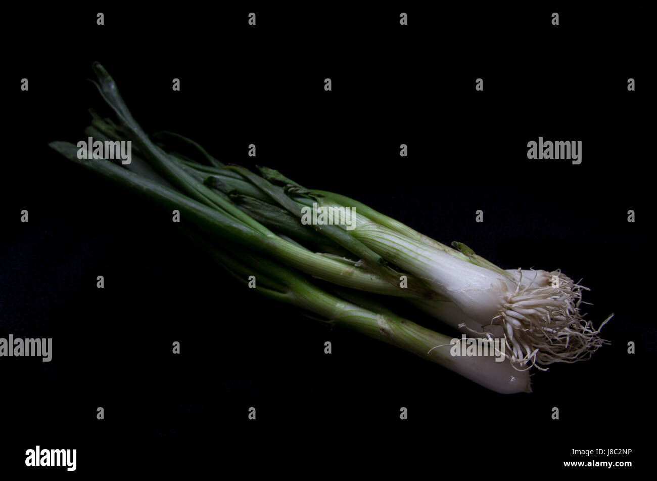 Spring onions - Stock Image