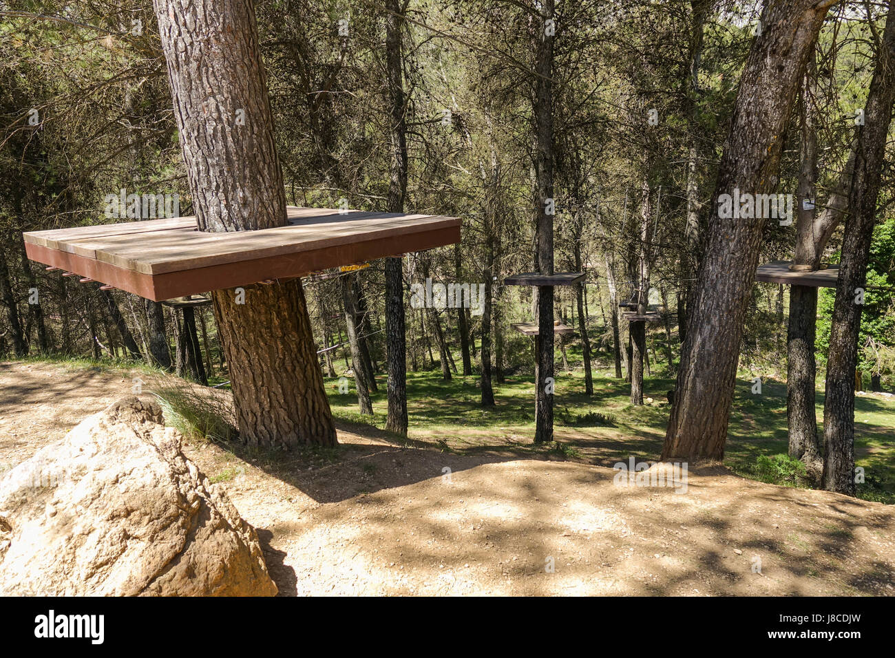 Wooden platforms in pine trees, rope course in the tree canopy, canopy ropes and ziplane park, Andalusia, Spain. - Stock Image