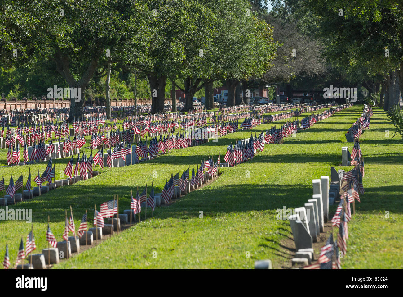 Chalmette National Cemetery's more than 14,129 US Flags were placed on the headstones of Veterans.  Approximately - Stock Image