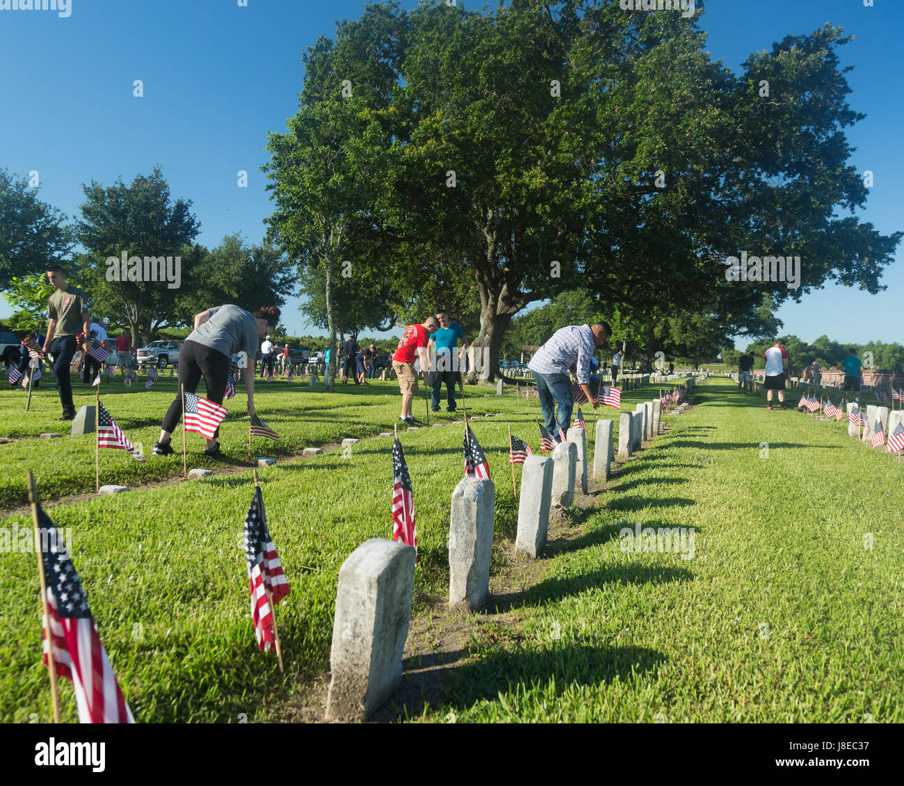 Approximately 300  individual volunteers assisted with placing American flags on head stones Chalmette National - Stock Image