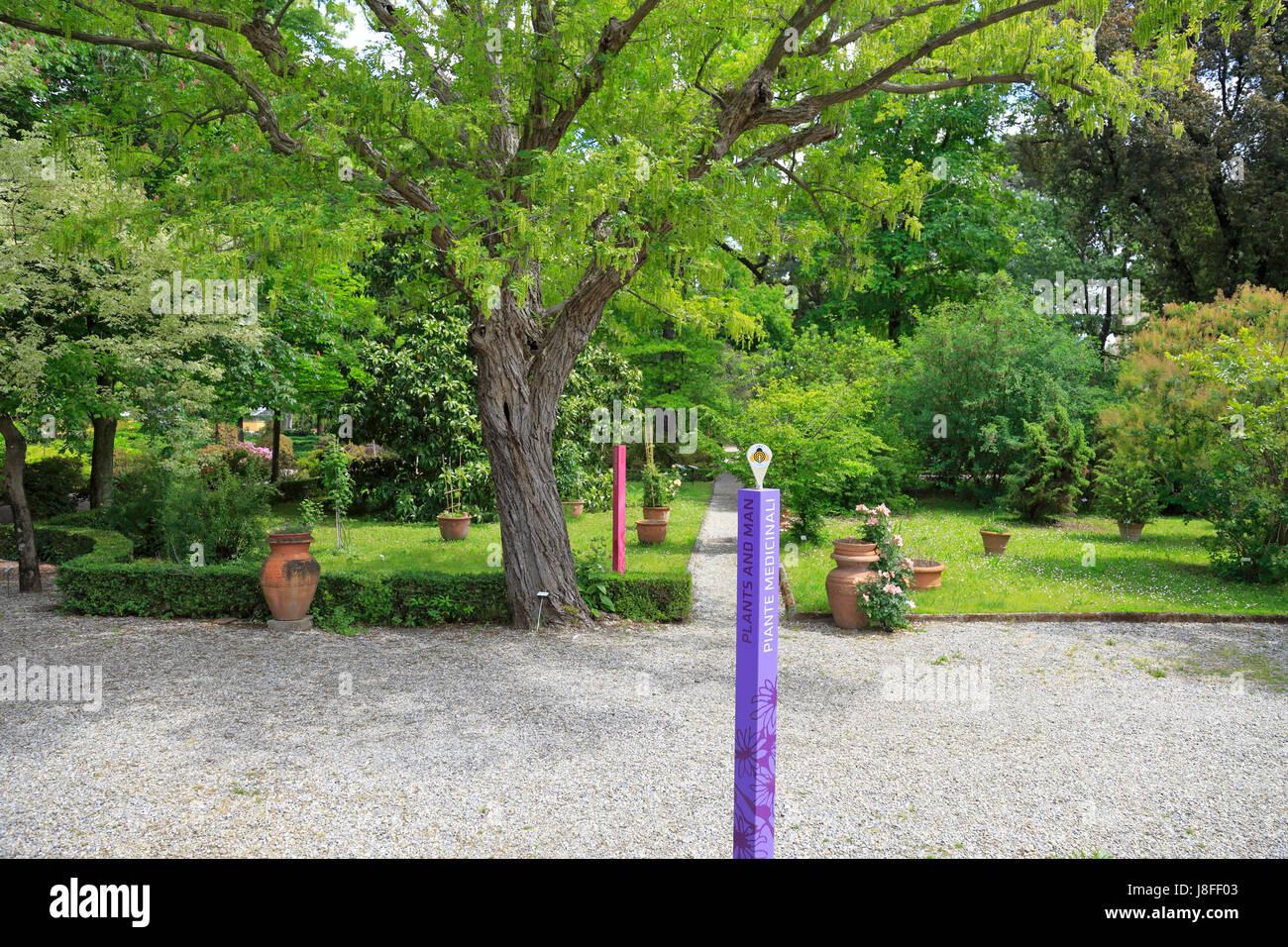 Orto botanico di firenze or giardino dei semplici from via