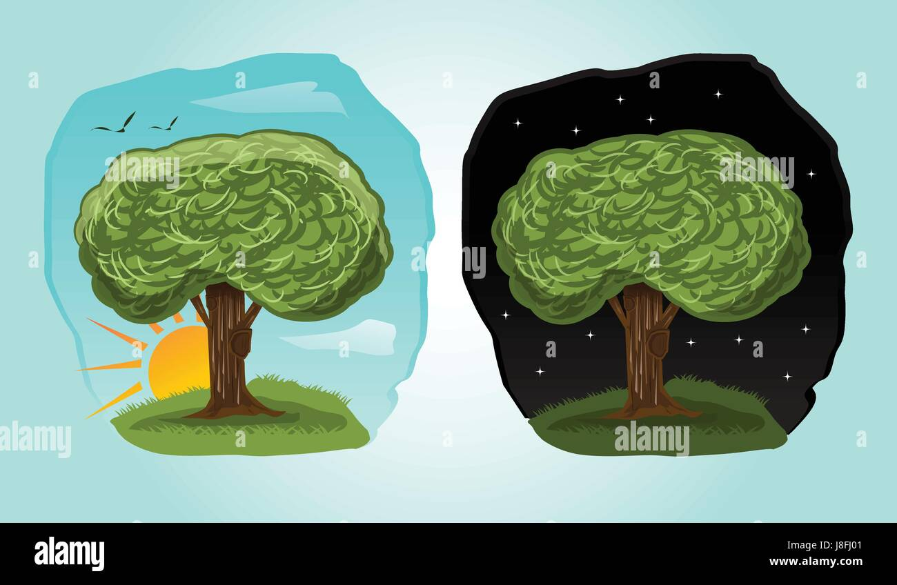 Playful Cartoon Tree Illustration With 2 Different Time Day Night Stock Vector Image Art Alamy Cozy building with ladder on wood trunk with lush foliage. https www alamy com stock photo playful cartoon tree illustration with 2 different time day night 142943585 html