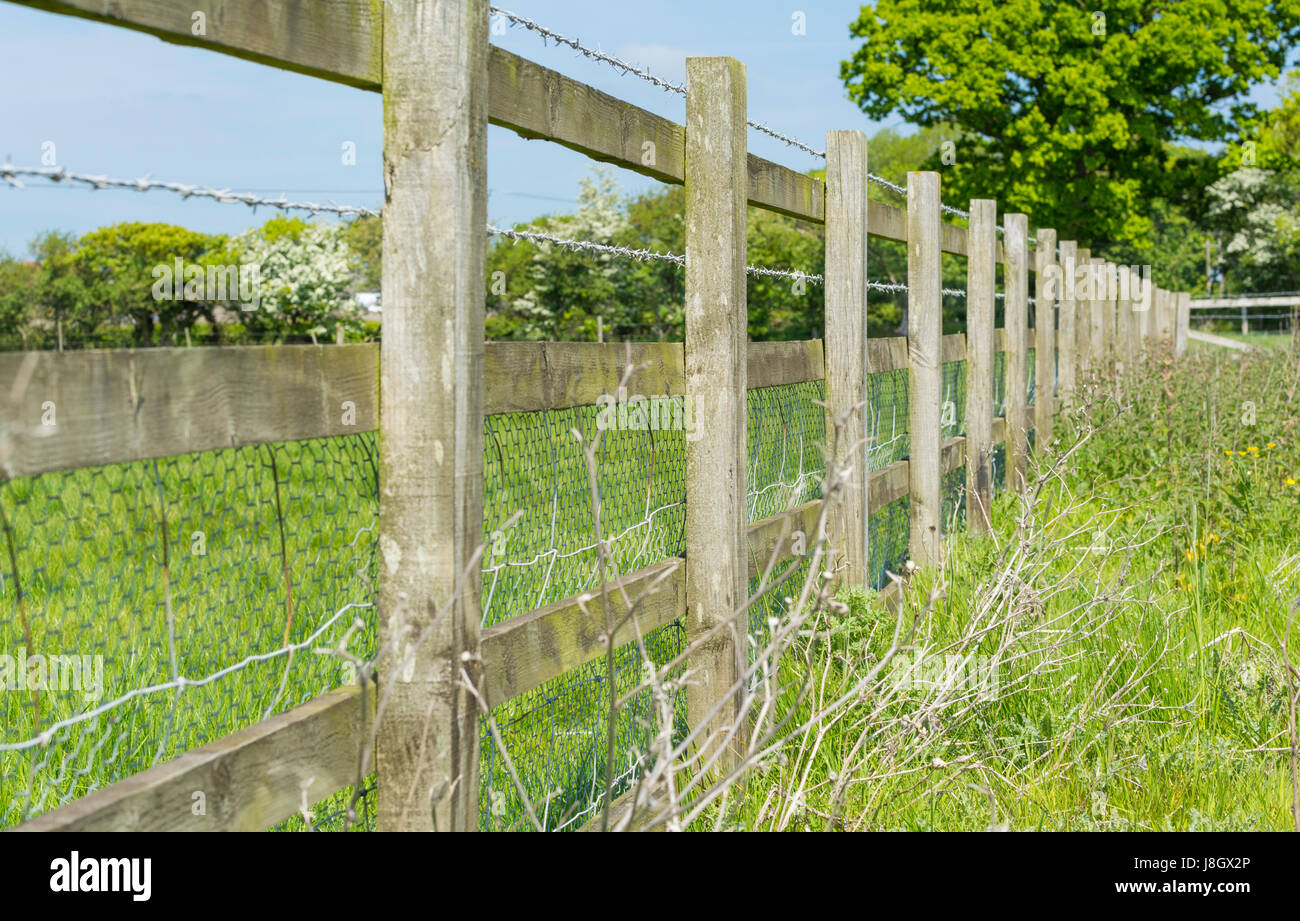 Wooden fence with barbed wire on the edge of a field in the UK. - Stock Image