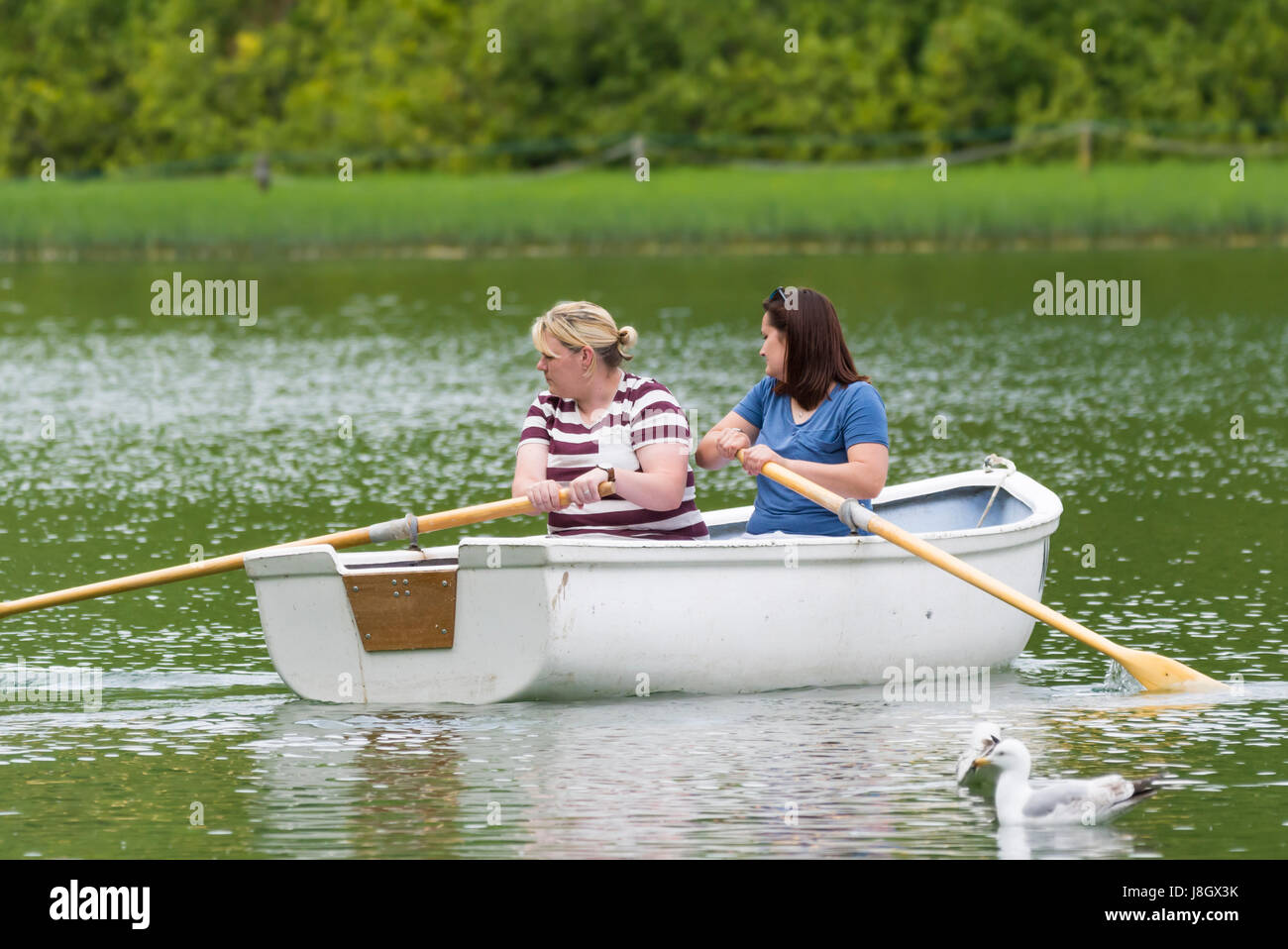 Female friends in a small wooden rowing boat on a boating lake in Spring. - Stock Image