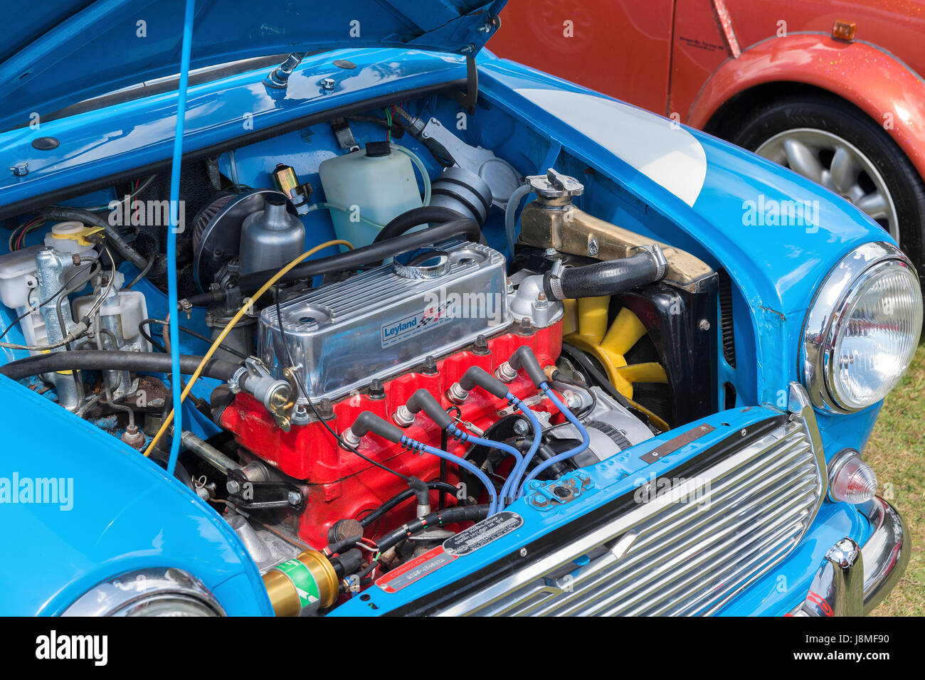 the engine in a classic mini car - Stock Image