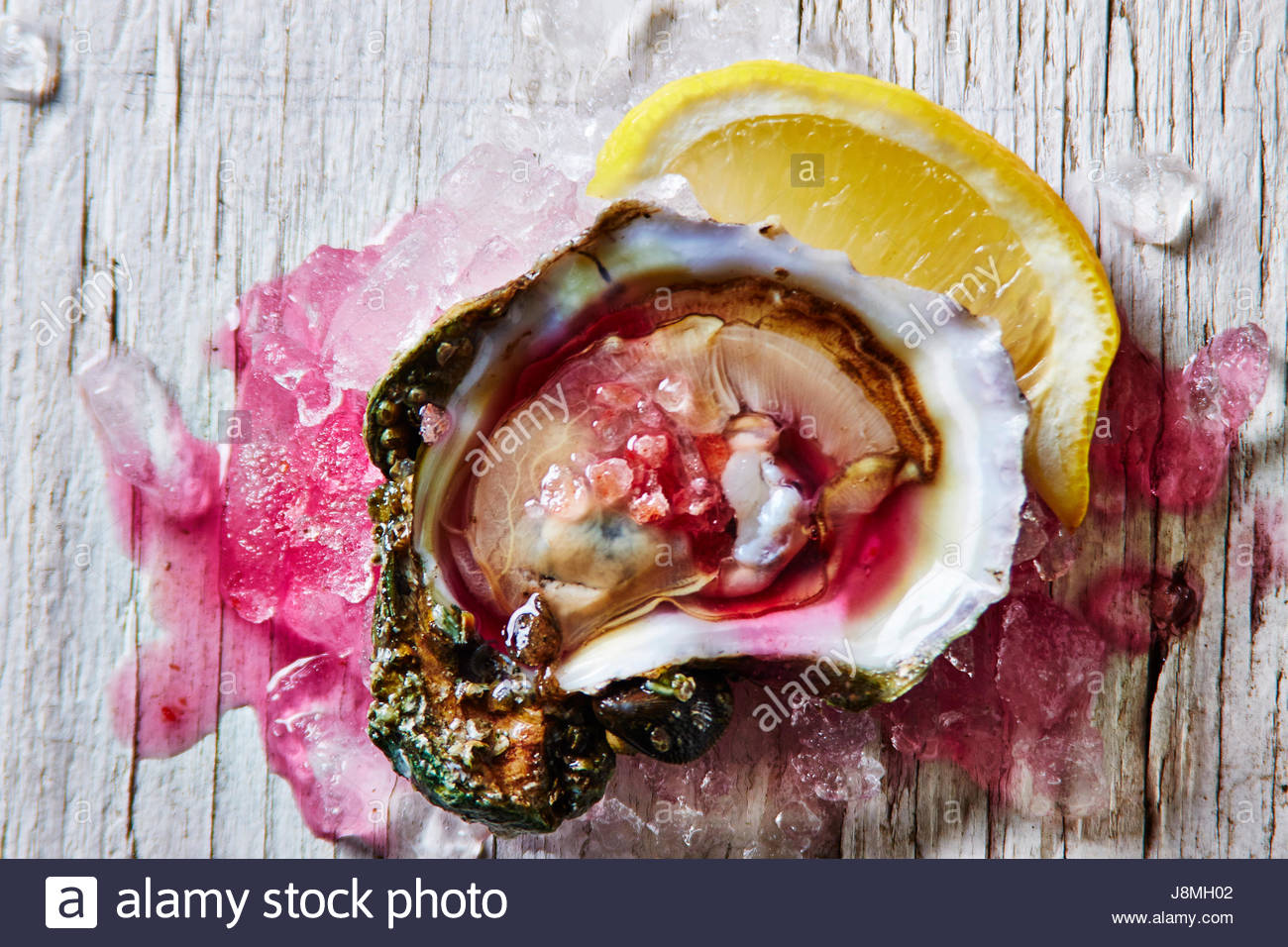 OYSTER IN PINK HIMALAYA SEA SALT,AND KIMCHI JUICE - Stock Image