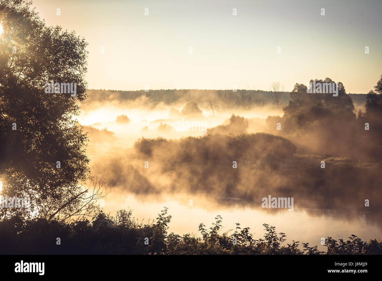 Misty rural landscape during golden hour at river bank in the early morning Stock Photo