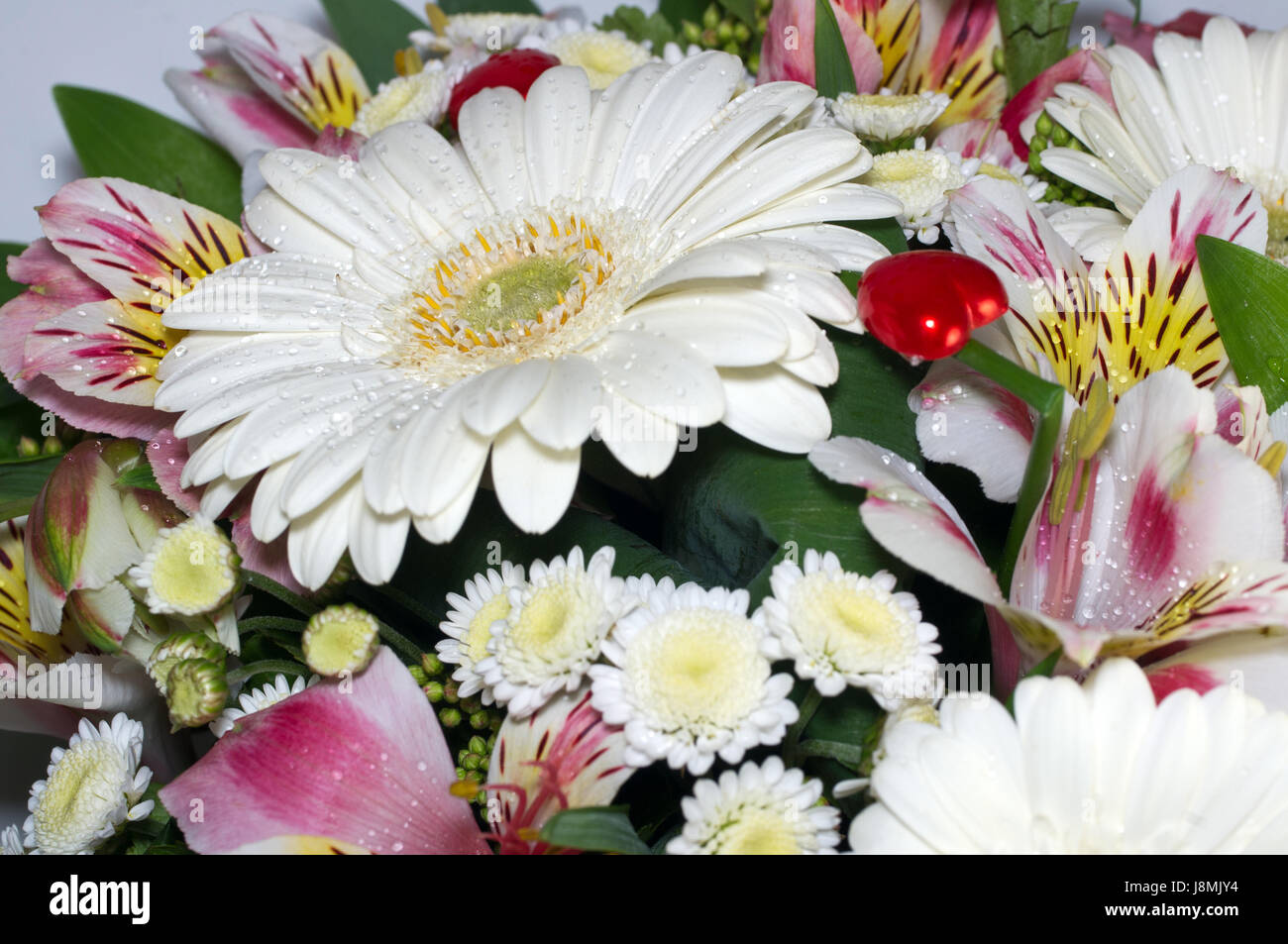 Bunch Of Flowers Chrysanthemum Gerbera Alstroemeria Leaves Of