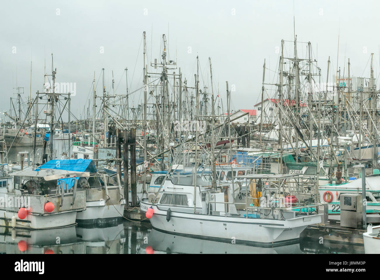 Commercial fish boats stay in port on an overcast winter day at French Creek, near Parksville on Vancouver Island, - Stock Image
