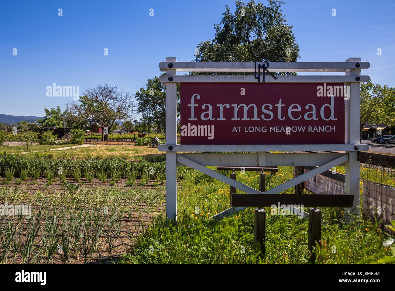 Culinary Garden, Culinary Gardens, Long Meadow Ranch Winery And Farmstead,  Saint Helena, Napa Valley, California, United States