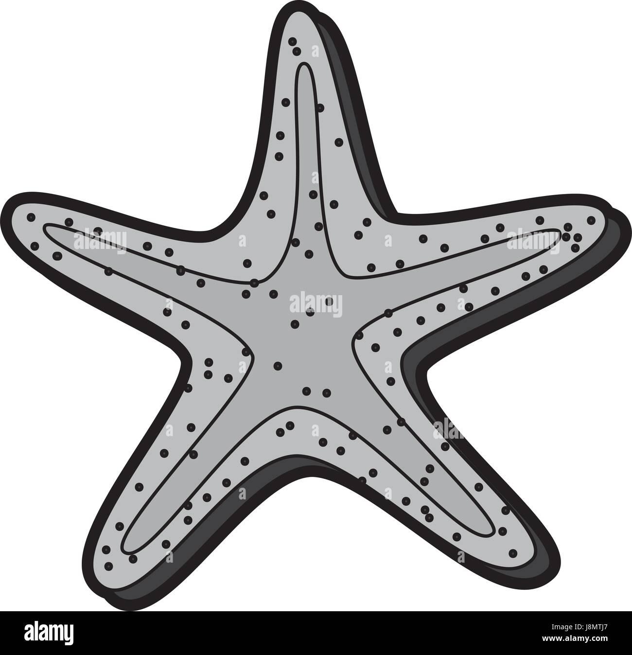 flat starfish cartoon - Stock Image