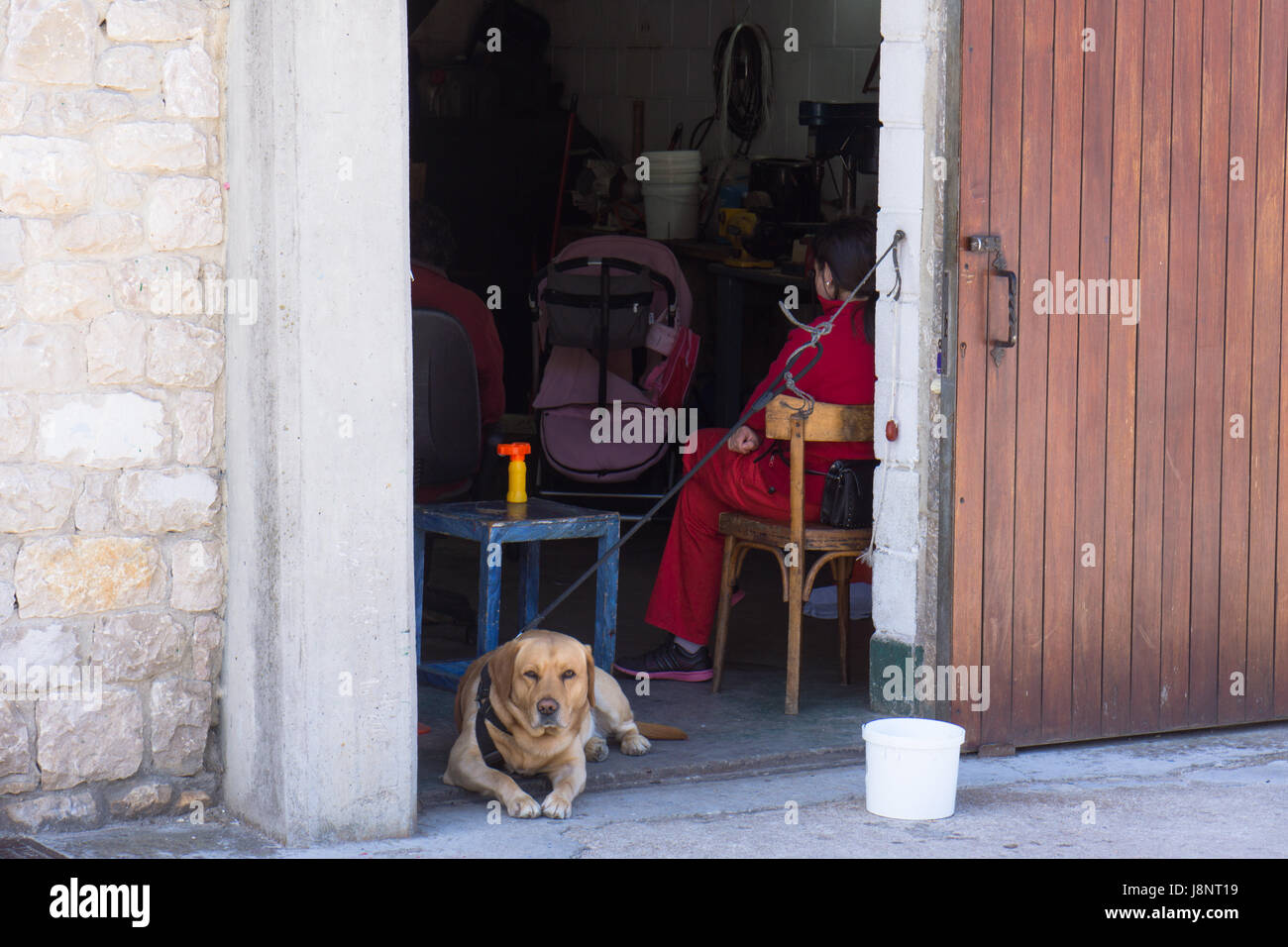 Labrador dog guarding the entrance to a fisherman's shed with family inside. - Stock Image