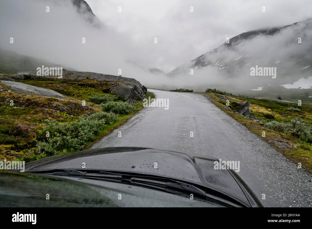 Country road on foggy day Stock Photo