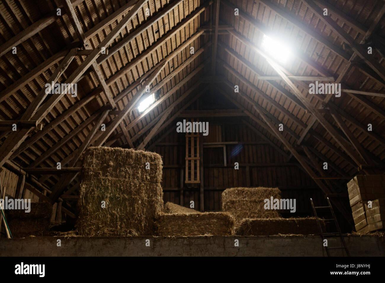 Haystack in barn Stock Photo