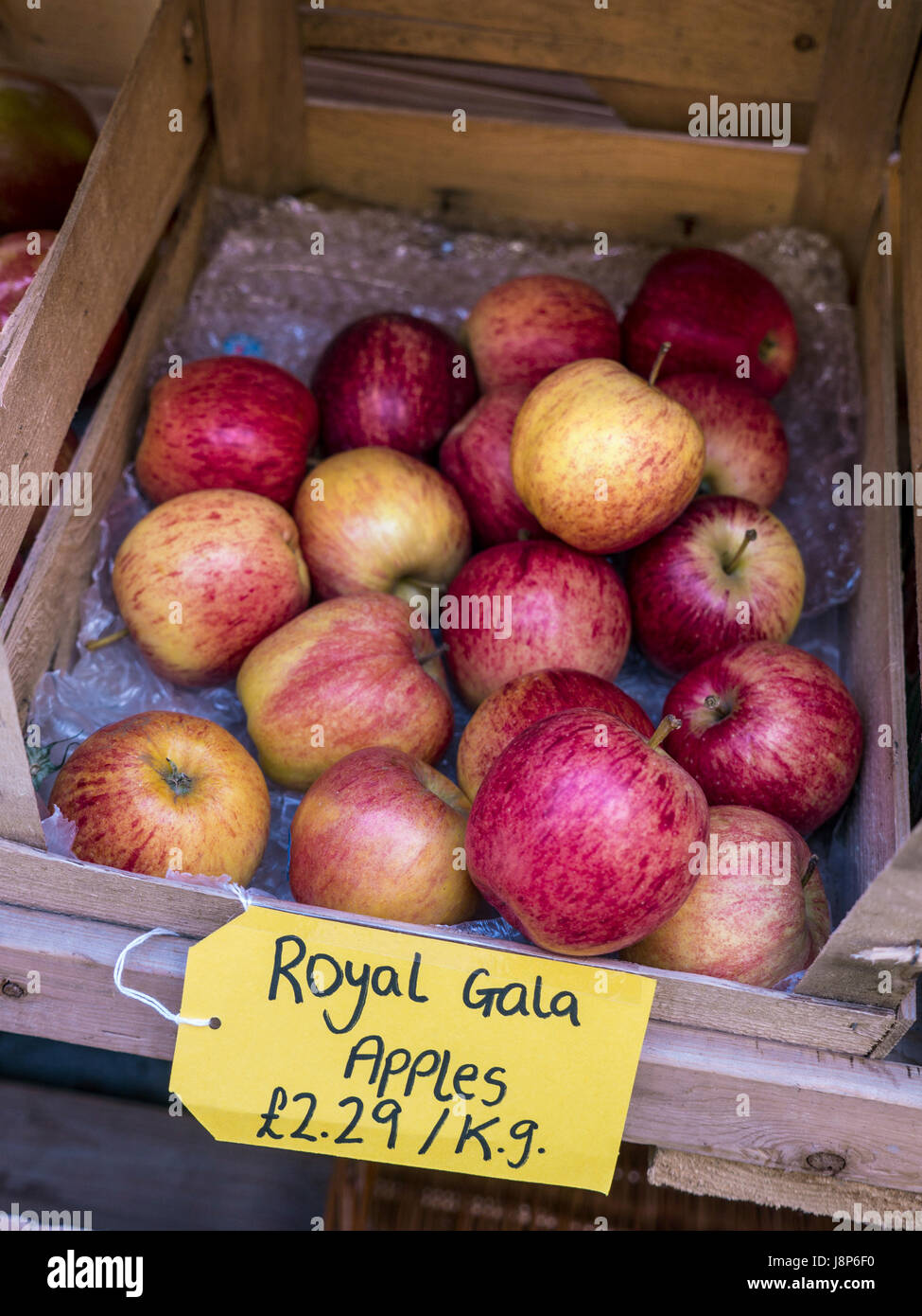 Royal Gala Apples in crate on display for sale at £2.29 per Kilo at a Dorset Farm Shop UK - Stock Image