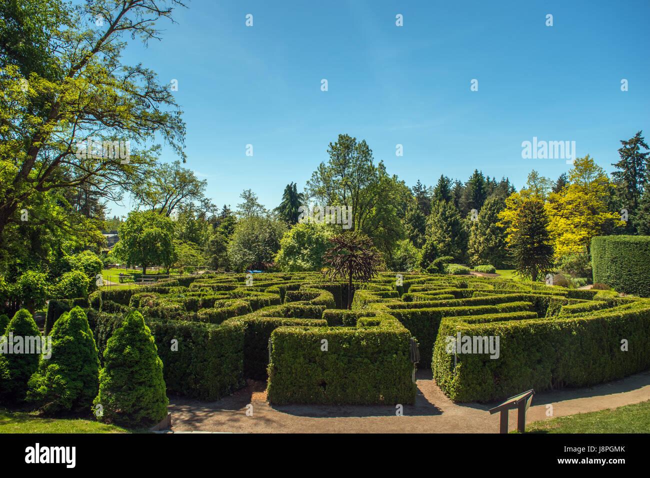 Maze Garden - Stock Image