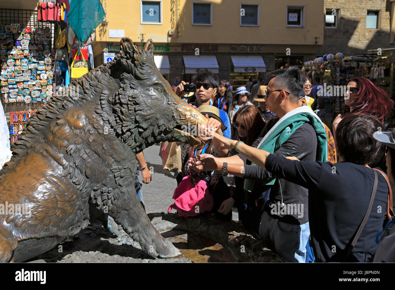 Japaneese tourists rubbing the snout of Il Porcellino a bronze fountain of a boar to ensure their return, Mercato - Stock Image