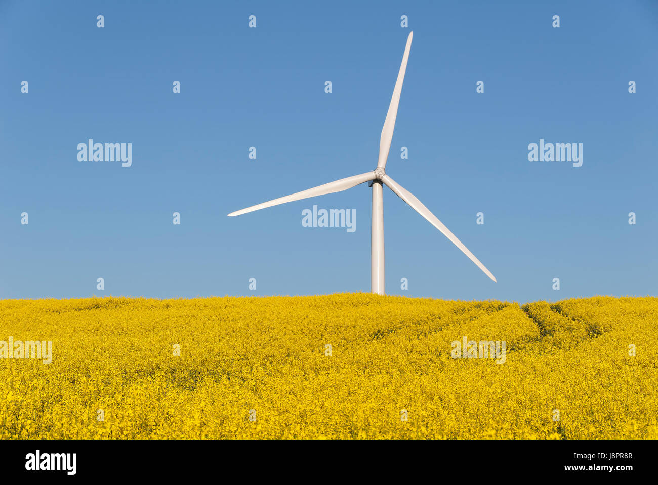 windmill, environment, enviroment, culture, field, energy, power, electricity, - Stock Image