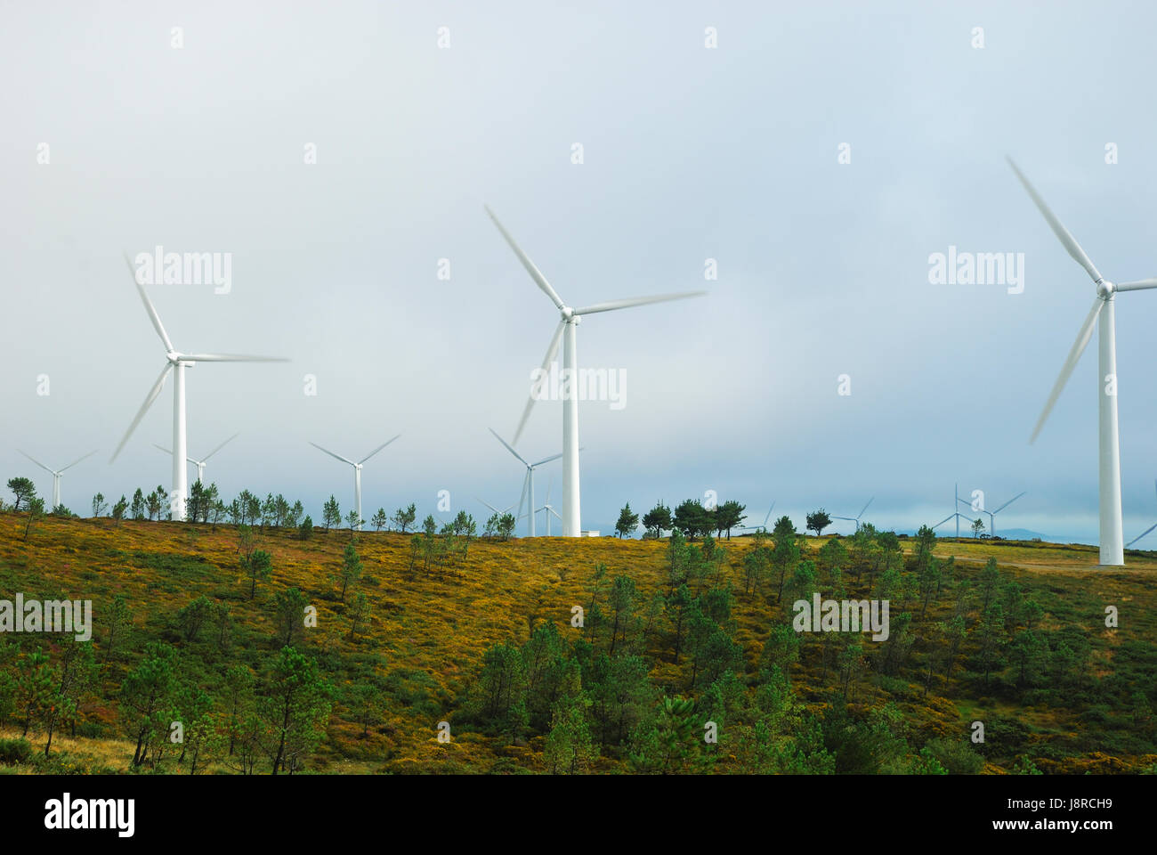 Windmills, electricity production ecological - Stock Image
