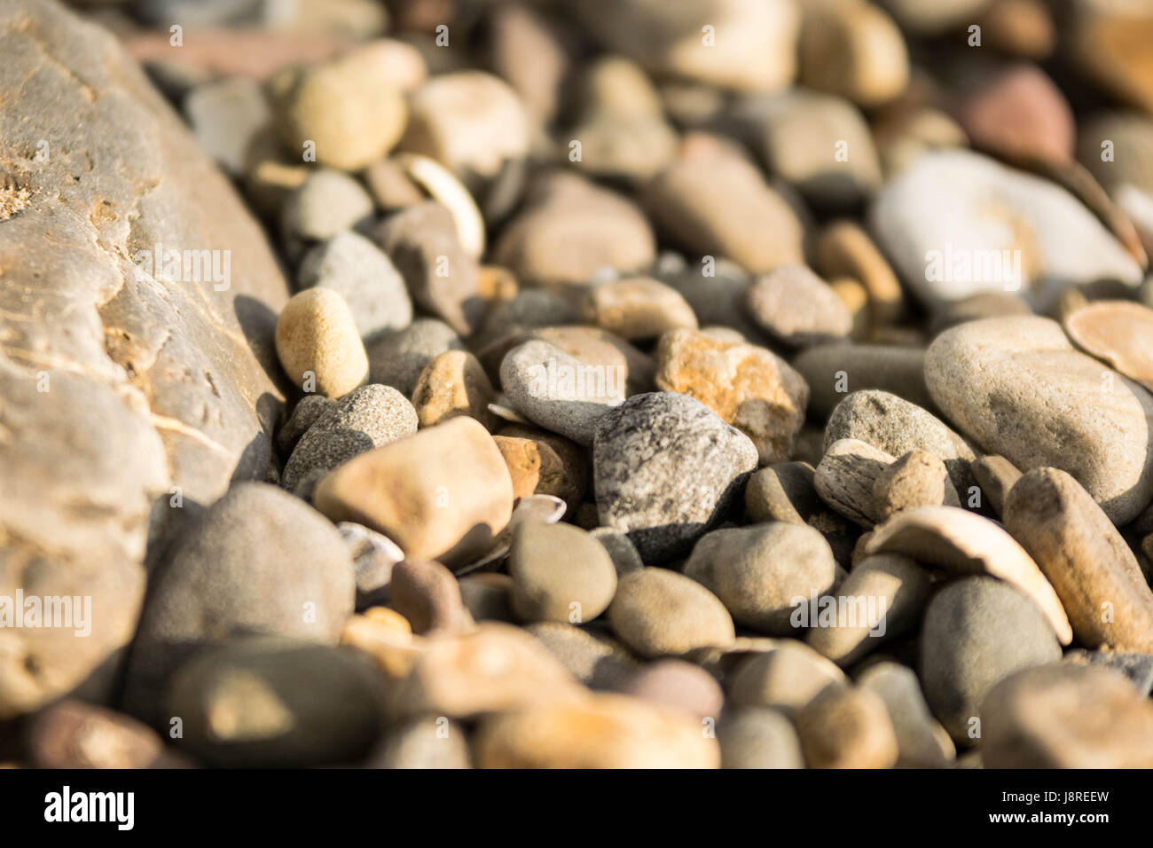 large group of pebblees - Stock Image