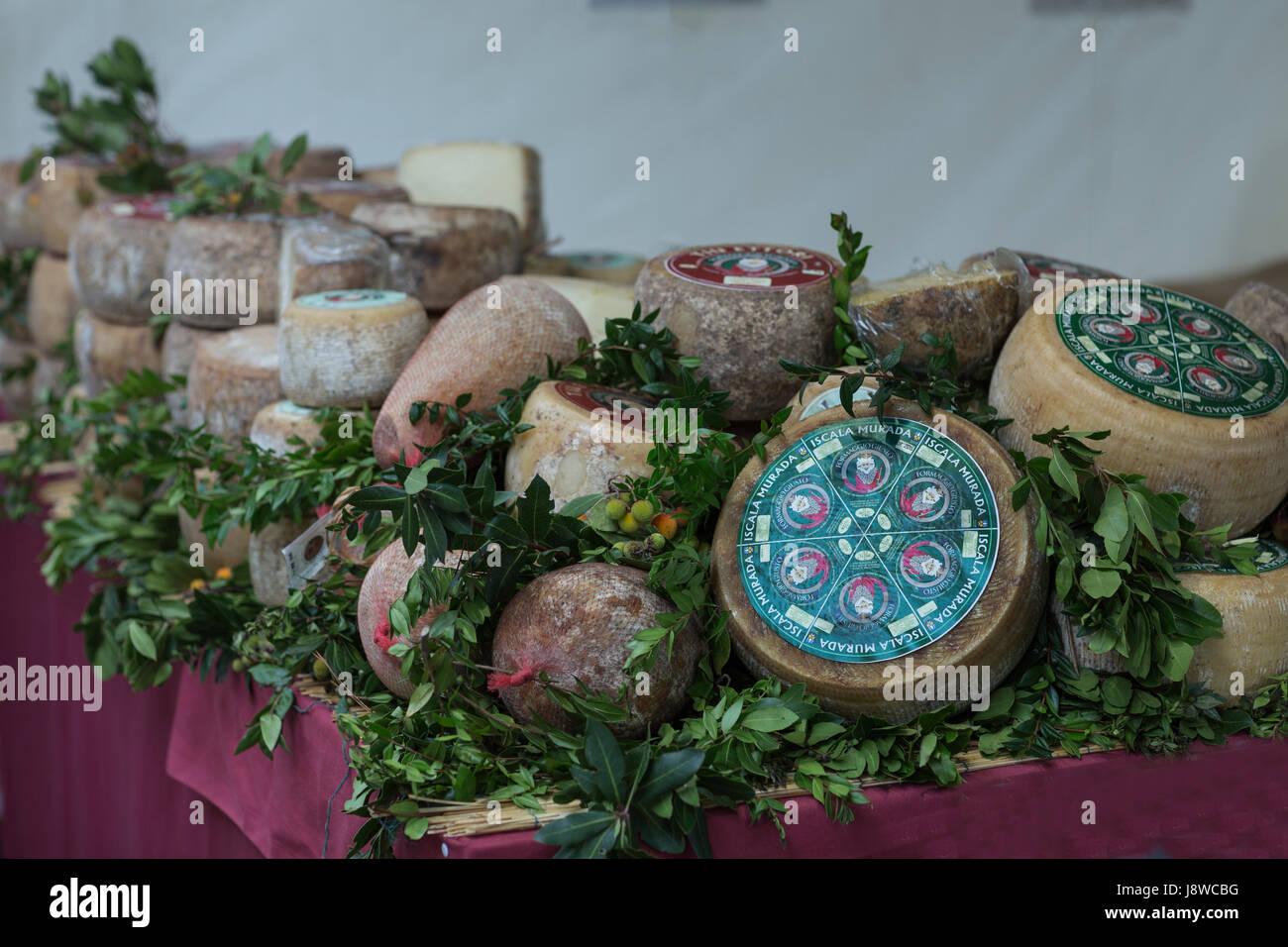 Typical pecorino cheese from Iscala Murada, Sardinia,Italy,Europe. - Stock Image