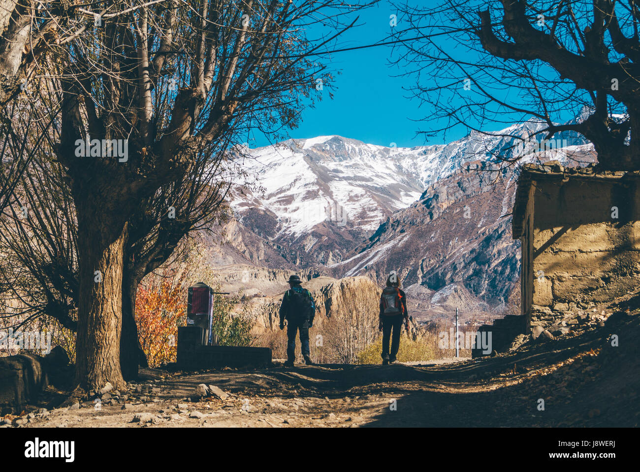 Trekkers walking through a row of dried trees during autumn in the Himalayan mountains of Nepal. - Stock Image