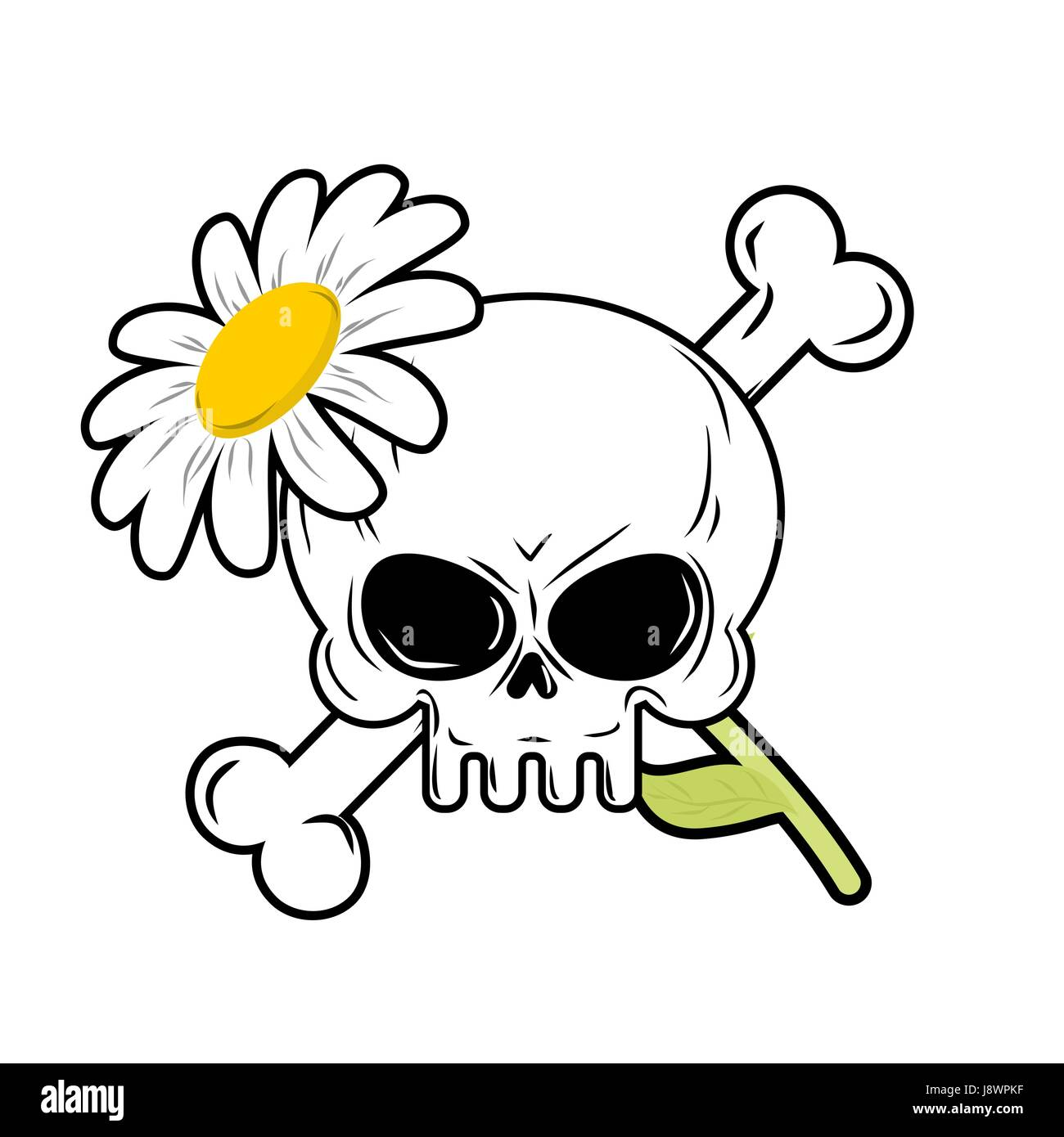 skull and flower symbol of death and symbol of life stock