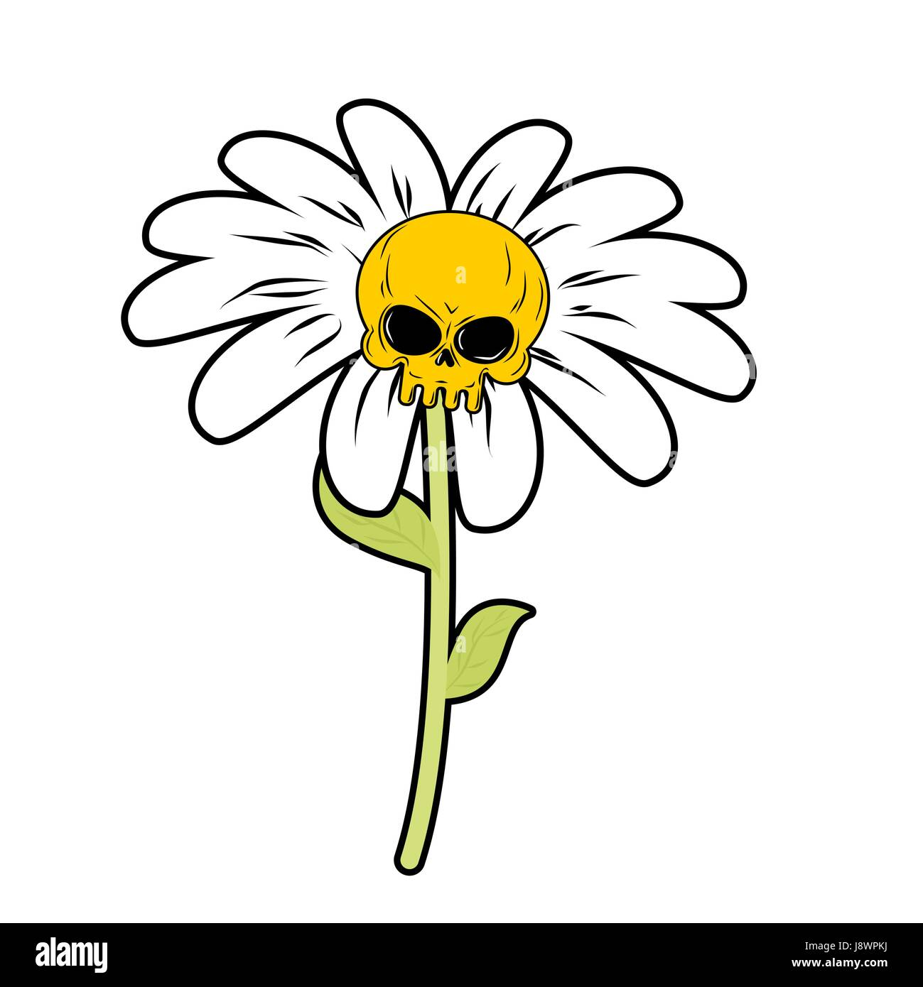Flower Of Death Chamomile With Skull Head Skeleton With White