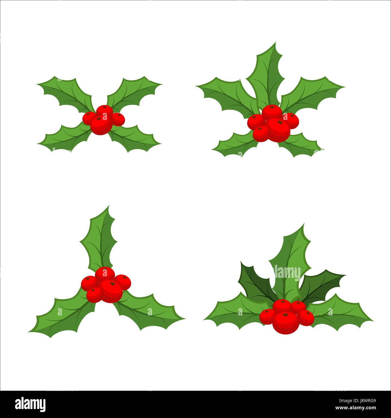 Sprig of mistletoe set. Traditional Christmas plant. Holiday red ...