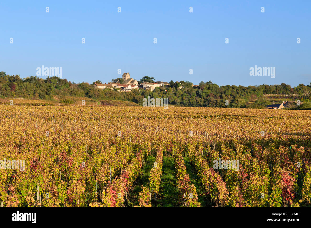 France, Saone et Loire, Mercurey, Touches hamlet, the vineyard fall and the village - Stock Image
