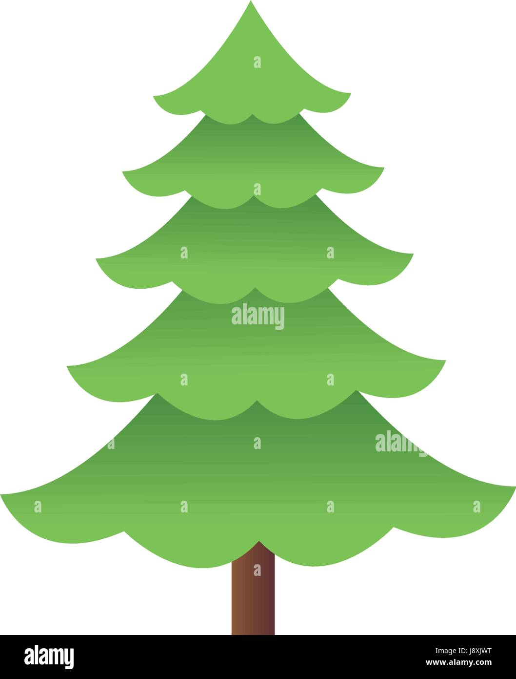Cartoon Pine Tree Natural Plant Conifer Image