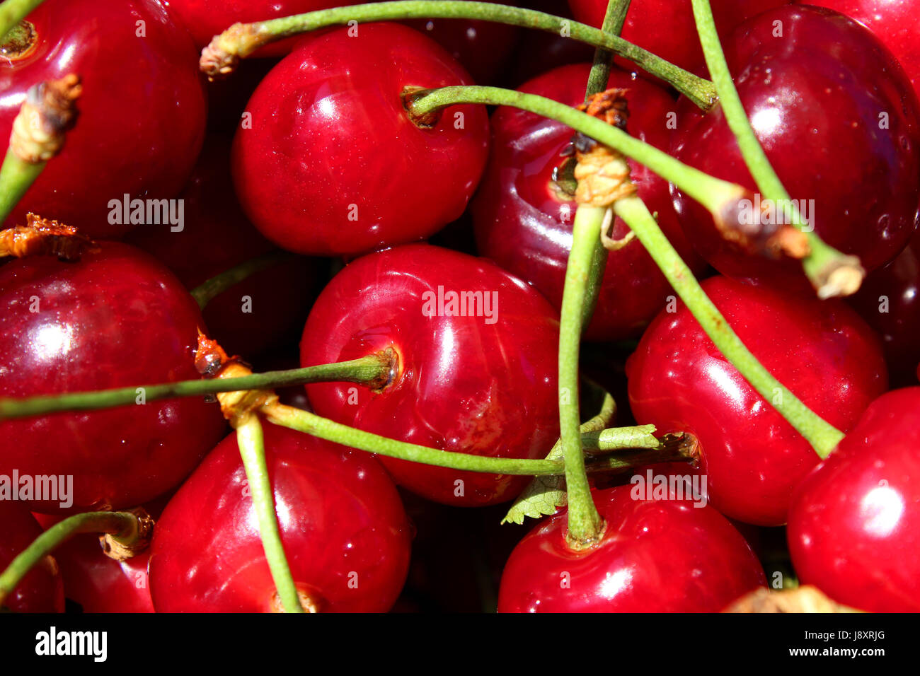 Cherry sweet red fresh fruit texture as background. Stock Photo