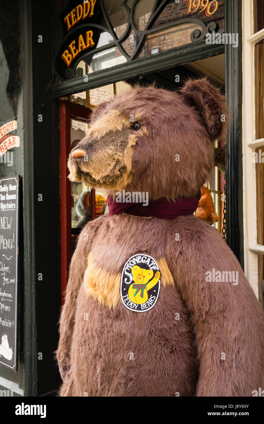 Designed to impress, a large teddy-bear outside a fifteenth century building in Stonegate, City of York, UK - Stock Image