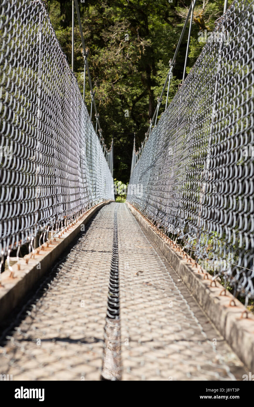 Swinging Bridge on the Hollyford Track New Zealand - Stock Image