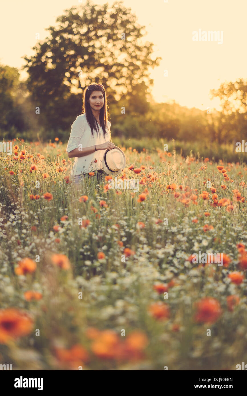 Woman at poppy field in summer sunset - Stock Image