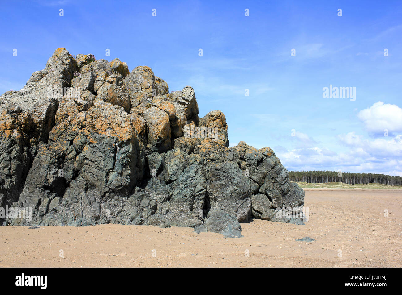 Pillow Lava On Llandwyn Island, Anglesey, Wales - Stock Image