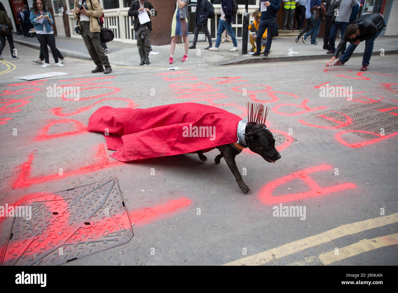 London, UK. 30th May, 2017. A dog belonging to an activist from Life Not Money crosses a road painted by activists - Stock Image