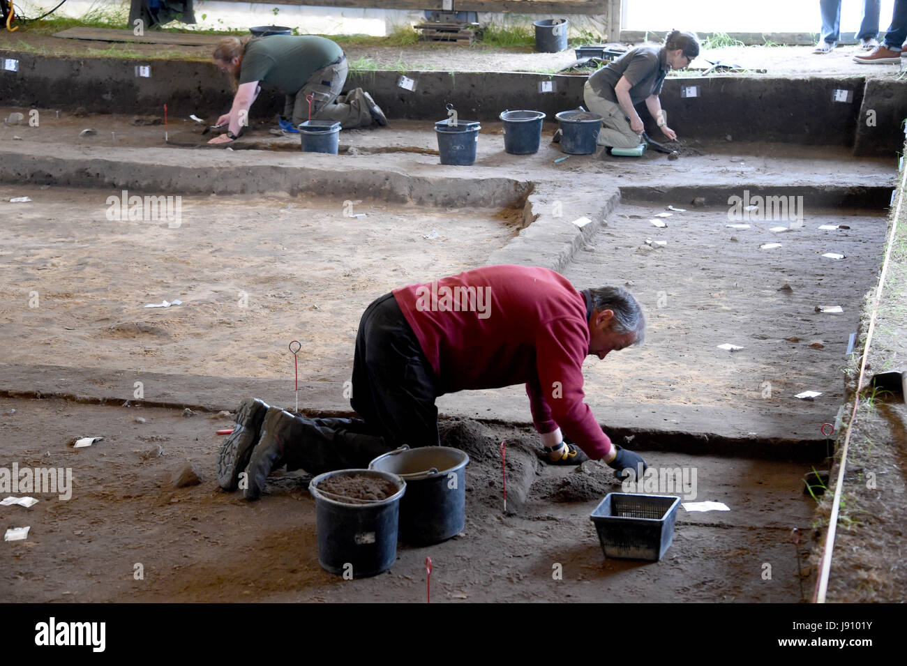 Excavation helpers work at an excavation site near the viking village Haithabu in Busdorf, Germany, 31 May 2017. - Stock Image