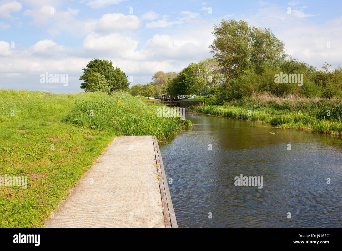 a yorkshire canal and lock with towpath woods and wildflowers and a jetty under a blue cloudy sky in summer - Stock Image